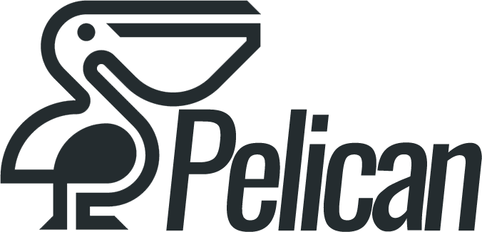 «Pelican» web design studio in Spain