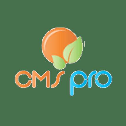 Diseño web CMSPro Barcelona